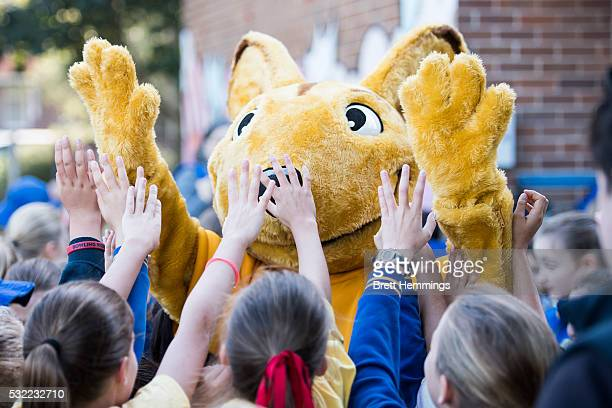 School kids interact with the Wallabies mascot during an ARU Game On event at Bronte Public School on May 19 2016 in Sydney Australia