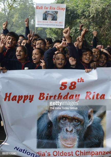 School students during the birthday celebration of Rita a 58yearold chimpanzee the oldest member of the Delhi Zoo in New Delhi