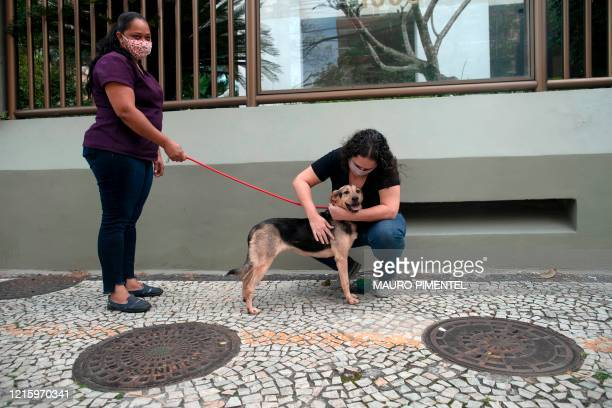 School teacher Adriana Nogueira caresses her newly adopted dog, Mabel, a tree-year-old, after meeting her outside her home of Lagoa neighborhood, in...