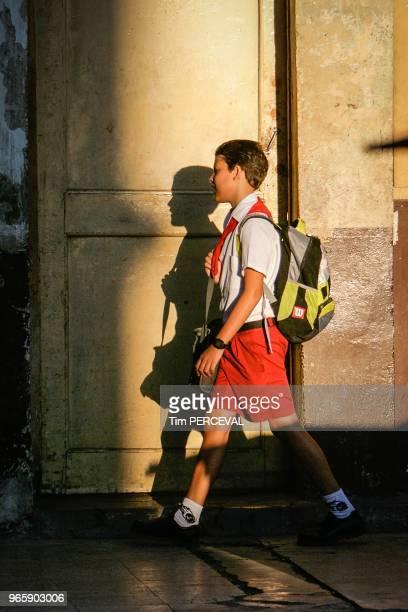 Schoolboy Shadow Havana