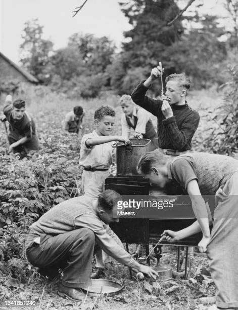 Schoolboys from the Glanmoor Secondary School in Swansea prepare their own food on an outdoor stove whilst helping with the potato harvest on 5th...