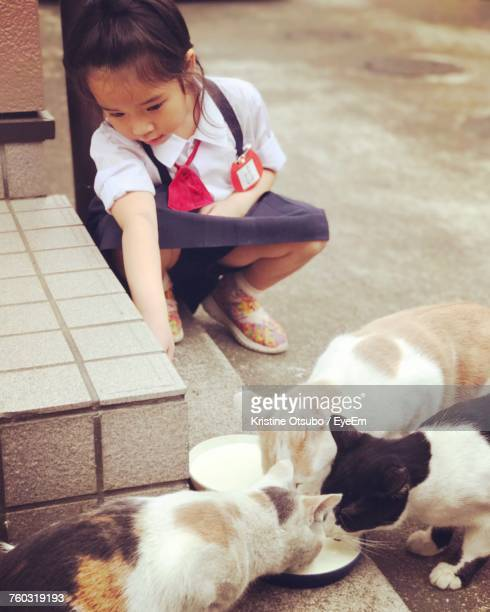 Schoolgirl Crouching By Cats Having Milk On Footpath