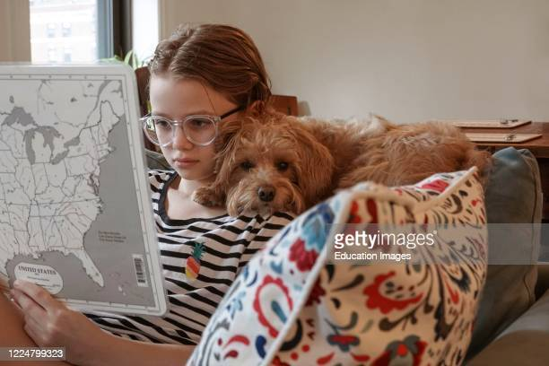 Schoolgirl working on schoolwork from home with her dog a Schnoodle during the Coronavirus lockdown, New York, USA.