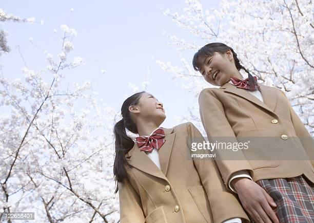 Schoolgirls standing under cherry blossom