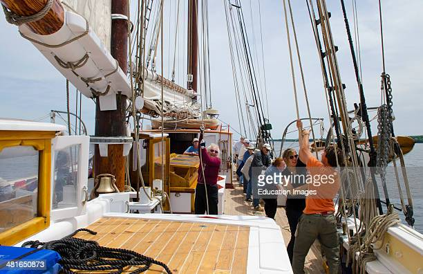 Schooner Heritage Windjammer Sailboat from Rockland Maine passengers crewing putting sails up hoisting sails on deck working adventure