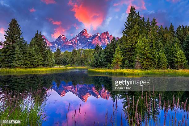 schwabacher's landing at dawn - jackson hole stock pictures, royalty-free photos & images