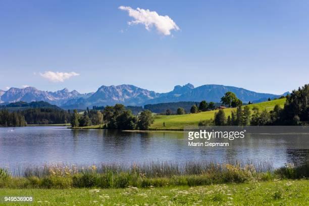 Schwaltenweiher, reservoir lake, Seeg, Brentenjoch and Aggenstein, Ostallgaeu, Allgaeu, Swabia, Bavaria, Germany