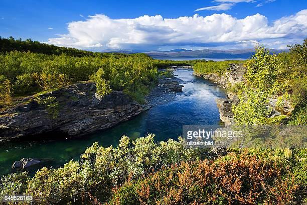 Schweden typische Landschaft Abisko Nationalpark