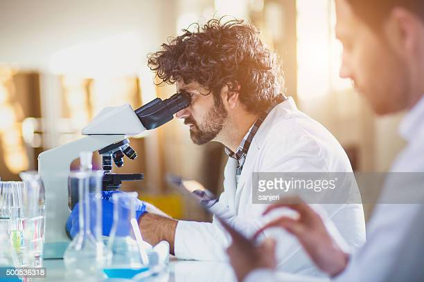 science lab - microscope stock pictures, royalty-free photos & images