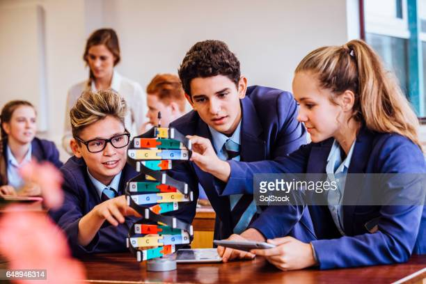 science lesson for her students - stem stock photos and pictures