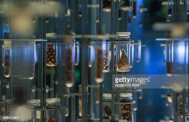 Scientific samples in storage containers