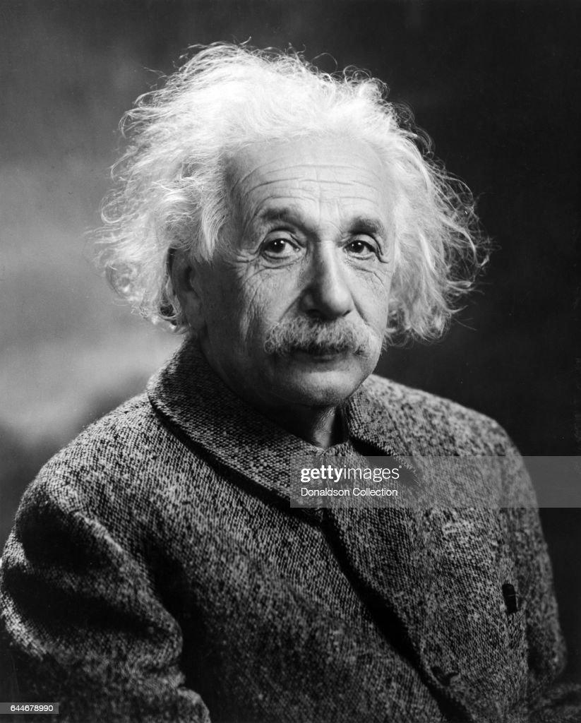 Albert Einstein Portrait : ニュース写真