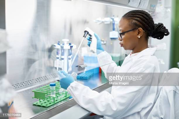 scientist analyzing medical sample in laboratory - ricerca foto e immagini stock