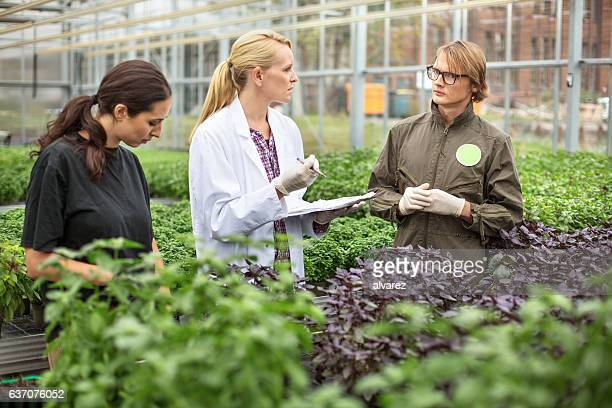 Scientist and farmer discussing in greenhouse