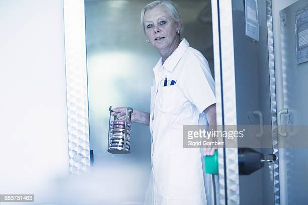 scientist carrying rack with petri dishes in laboratory - sigrid gombert stock-fotos und bilder