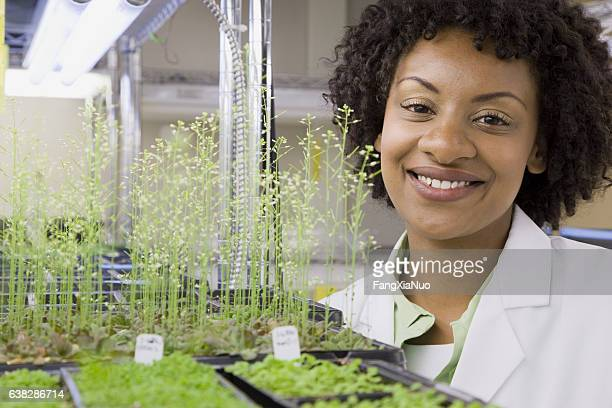 Scientist checking plant seedling growth in laboratory