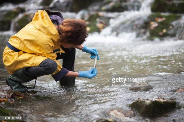 scientist ecologist taking a water sample in the forest - inquinamento foto e immagini stock