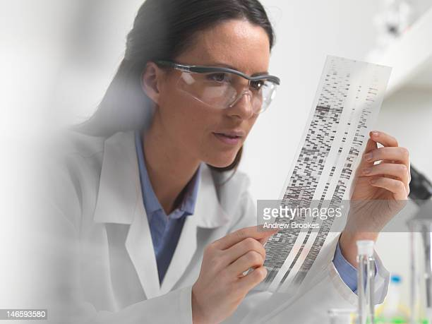 Scientist examining DNA autoradiogram