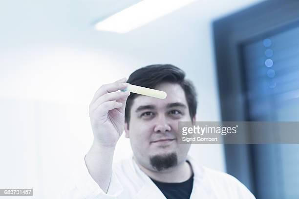 scientist examining sample in test tube - sigrid gombert fotografías e imágenes de stock