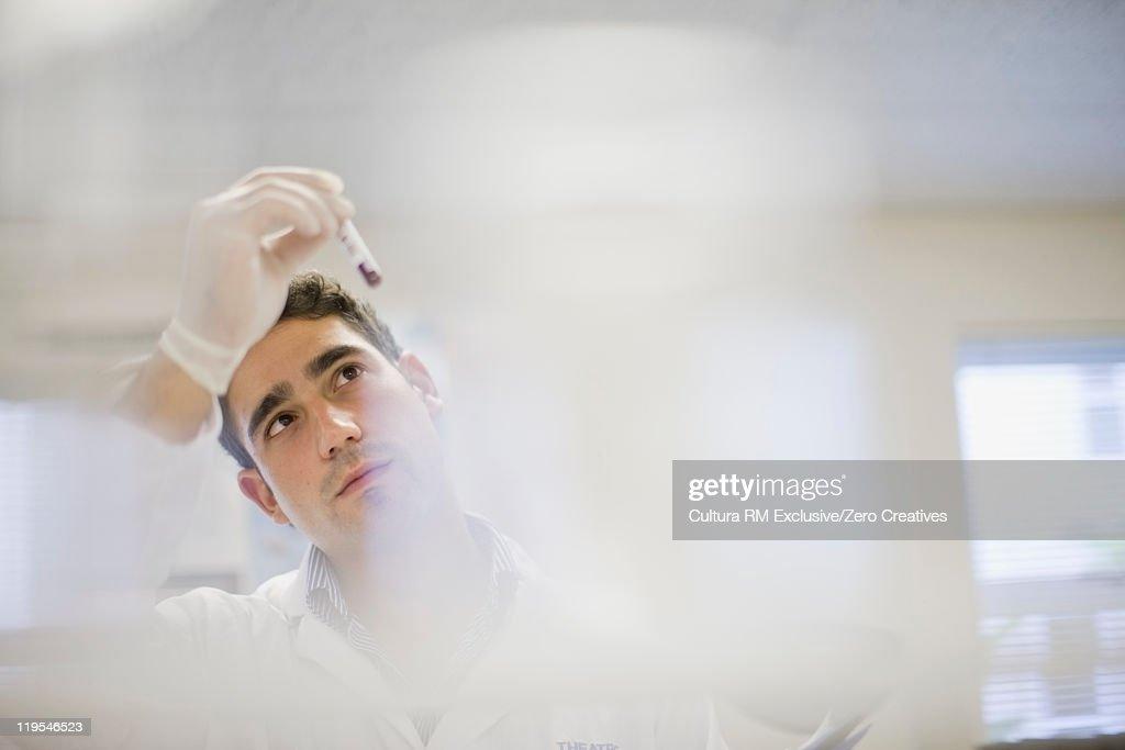 Scientist examining test tube in lab : Stockfoto