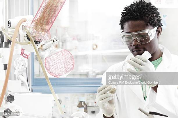 scientist examining test tubes in lab - sigrid gombert stock pictures, royalty-free photos & images