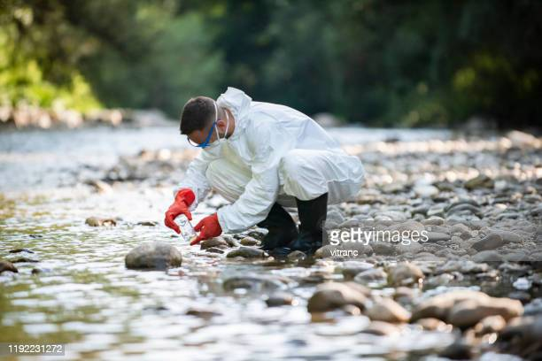 scientist examining toxic water samples - ecologist stock pictures, royalty-free photos & images