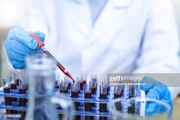 scientist hand holding test tube with blood in laboratory. - tube stock pictures, royalty-free photos & images
