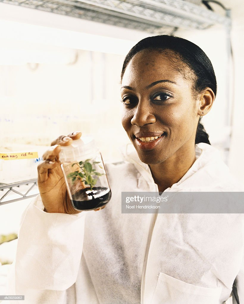 Scientist Holding a Plant in a Laboratory Jar : Stock Photo