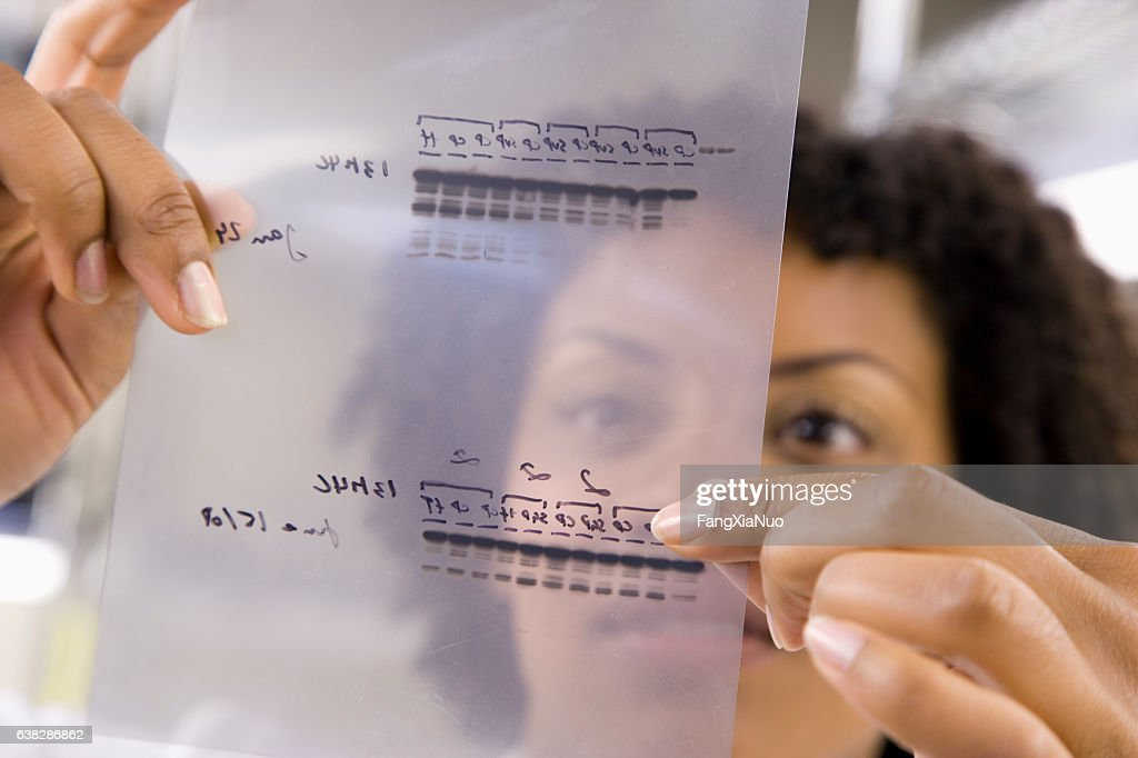 Scientist holding medical samples in laboratory : Stock Photo