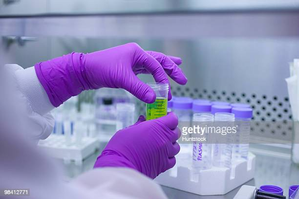 scientist in a laboratory - purple glove stock pictures, royalty-free photos & images