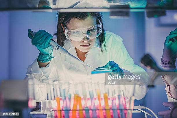 scientist  in laboratory - microscope stock pictures, royalty-free photos & images