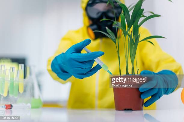 scientist in laboratory working - microbiologist stock pictures, royalty-free photos & images