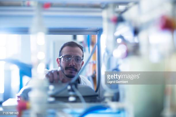 scientist inspecting scientific equipment - sigrid gombert foto e immagini stock