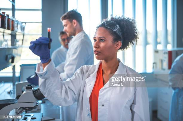 scientist looking at blood sample in laboratory - blood test stock pictures, royalty-free photos & images