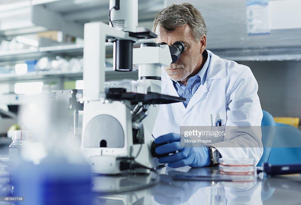 Scientist looking through microscope : Foto de stock