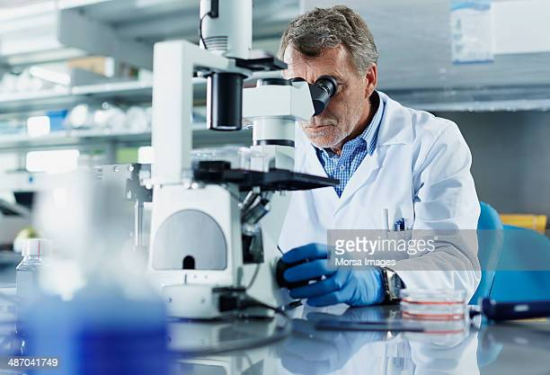 scientist looking through microscope - ricerca foto e immagini stock