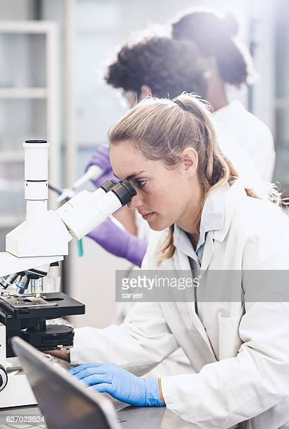 Scientist Looking Through the Microscope
