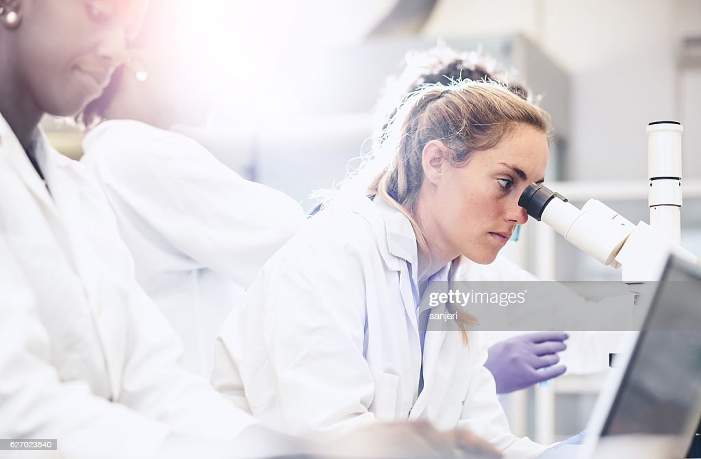 Scientist Looking Through the Microscope : Stock Photo