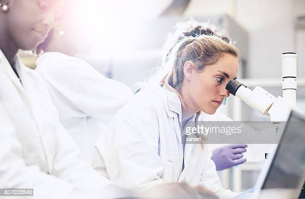 scientist looking through the microscope - research stockfoto's en -beelden