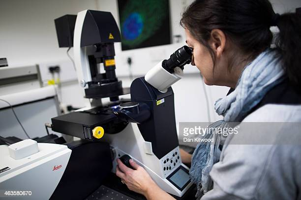 Scientist looks at cells through a fluorescent microscope at the laboratories at Cancer Research UK Cambridge Institute on December 9 2014 in...