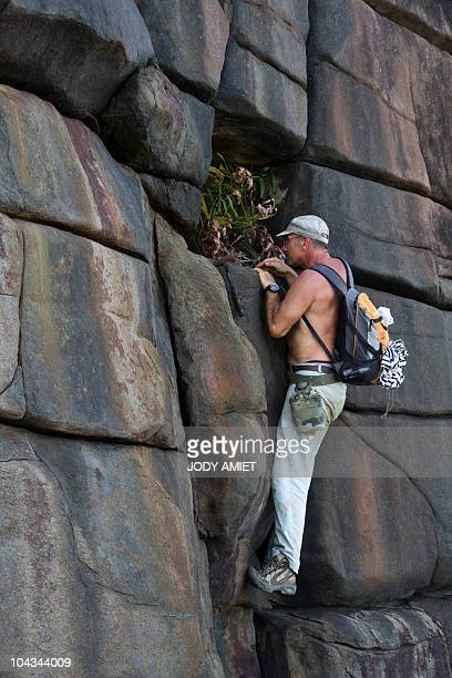 Scientist of the TerreOcean mission French geologist Eric Gilli climbs a rock on February 13 on the Devil's Island in the Caribbean Sea off French...