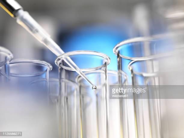 scientist pipetting a sample into a test tube during a experiment in the laboratory - remédio imagens e fotografias de stock