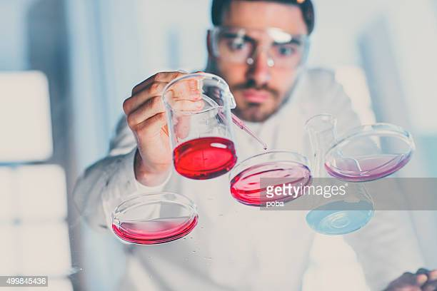 Scientist pipetting sample into a petri dish in a laboratory