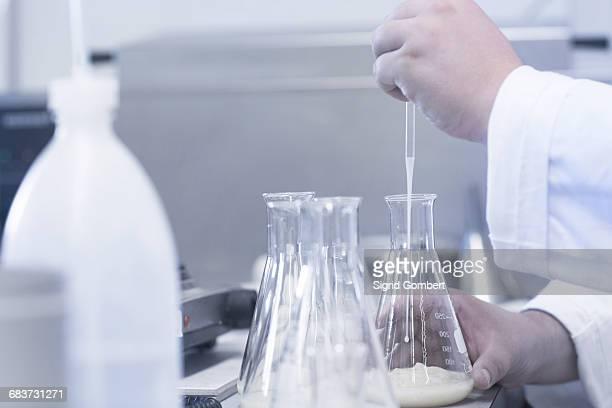 scientist pipetting sample into beaker in laboratory - sigrid gombert stockfoto's en -beelden