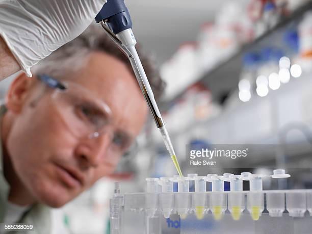 Scientist pipetting sample into eppendorf tube in laboratory