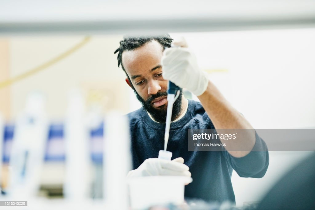 Scientist pipetting samples in research lab : Stock Photo