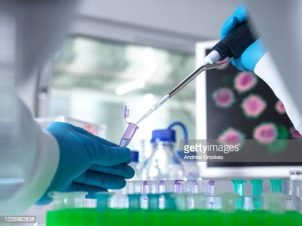 scientist preparing a sample vial for analytical testing using a pipette in the laboratory used in dna, medical and pharmacology research. - scientific experiment stock pictures, royalty-free photos & images