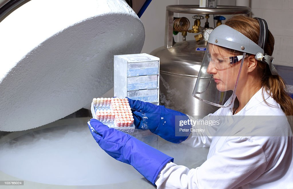 Scientist removing human cell from liquid nitrogen : Stock Photo