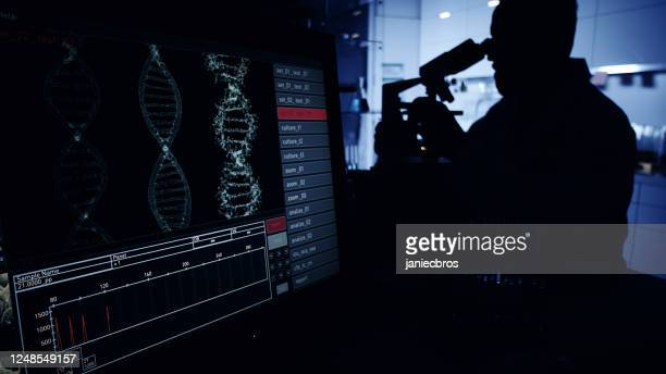 scientist silhouette in laboratory research. dna on computer screen - genetic mutation stock pictures, royalty-free photos & images