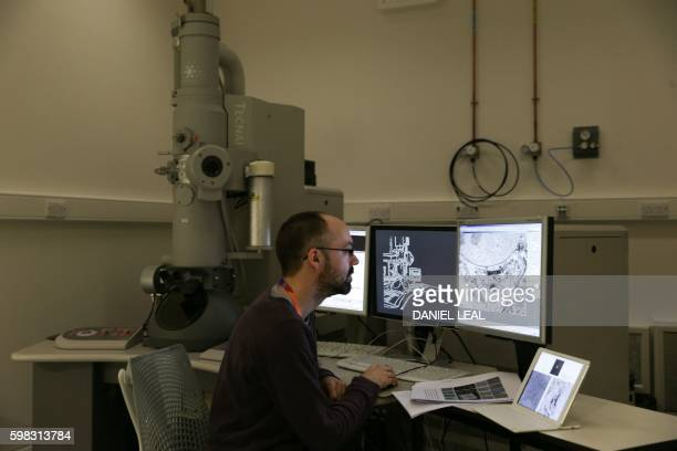 A scientist studies bacteria living inside a cell with an electron microscope during a media preview at the new Francis Crick Institute building in...